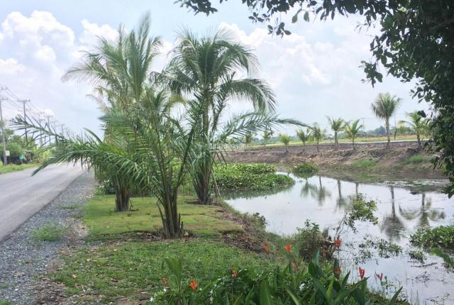 Đất khu công nghiệp Tân Phú giá rẻ