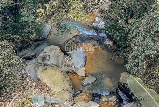 Đất nghỉ dưỡng khu du lịch tại thị trấn Tam Đảo Vĩnh Phúc, giá rẻ nhất 16tr/m2, 0924465555