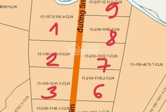 Đất sào sát đường 20 xã Hưng Thịnh, giá chỉ 750tr/1000m2 đường bê tông vào đến đất