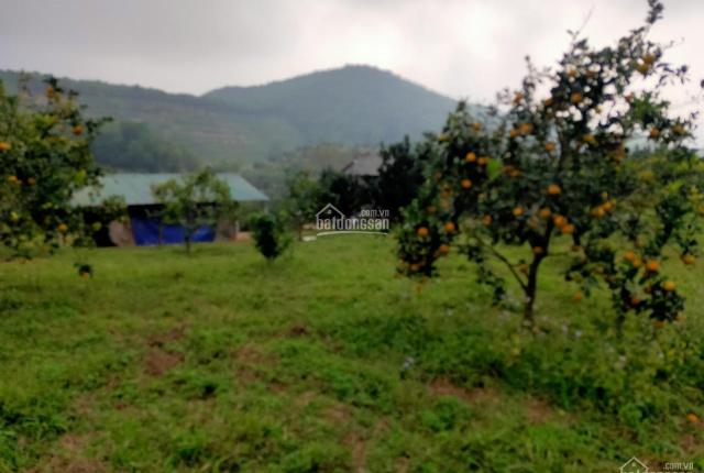 Chính chủ cần bán mảnh đất thuộc huyện Kim Bôi với diện tích 6700m2 view cao nhìn cực thoáng