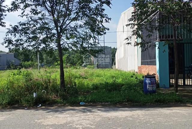 Cần tiền đầu tư nên bán gấp 3 lô đất ở Tân Định, sổ hồng riêng, sát chợ QL13