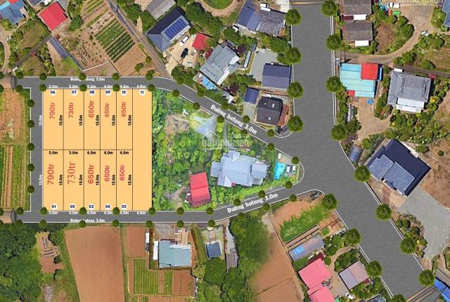Đất rẻ nhất thị trường Điện Nam Đông chỉ 650 triệu/lô, liên hệ ngay 0982989443