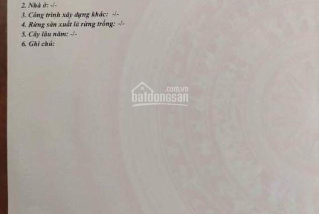Đất nền sổ riêng Tam Phước, Biên Hoà