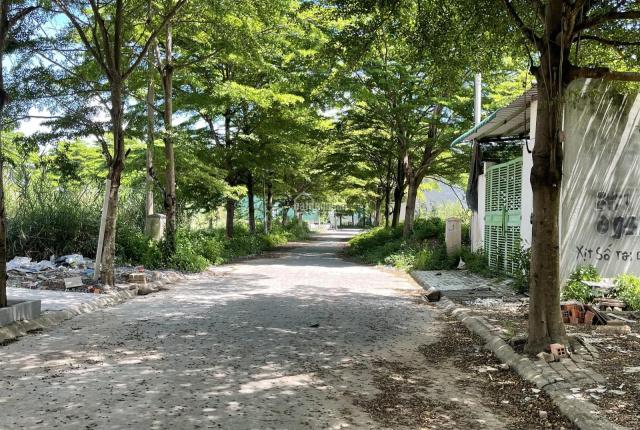 Chuyên giới thiệu khu dự án Thời Báo Kinh Tế đường Bưng Ông Thoàn quận 9