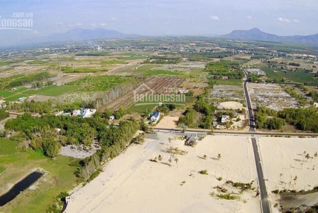 Tôi cần bán nhanh lô đất đẹp MT 28m ngay gần Nguyễn Chí Thanh, Tân Bình, LaGi, giá tốt mùa dịch
