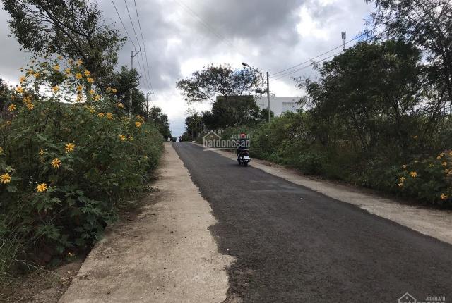 Đất trung tâm - bán đất HXH 4m đường Chu Mạnh Trinh, P Hội Phú, TP. Pleiku, Gia Lai, DT 6x23, 950tr