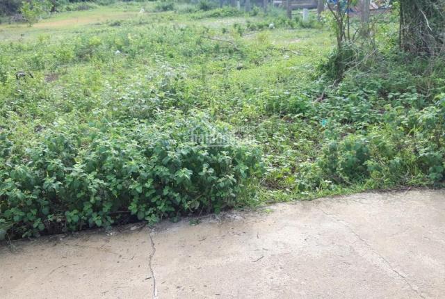Hàng đẹp, DT: 15x47m, có 150m2 thổ cư, Tân Bình, TX. La Gi, Bình Thuận