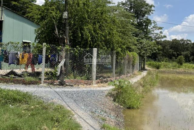 Anh họ cần bán lô góc 279m2 đất ở Ấp 1 Xã Bình Chánh Huyện Bình Chánh cách lộ nhựa 500m full thổ cư