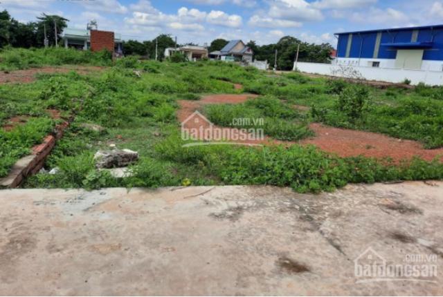 Cần tiền mở trang trại tôi bán hết mảnh đất 9.800m2 SHR cạnh KCN Việt-Nhật, ngay UBND chợ. 560tr