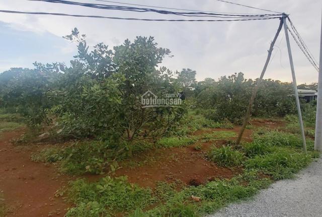 Chính Chủ cần bán 3 lô đất tại trung tâm thị trấn Ngãi Giao