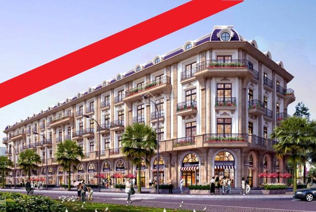 Khách hàng khi mua dự án D'. Metropole Hà Tĩnh của Tân Hoàng Minh cần chú ý những điều sau