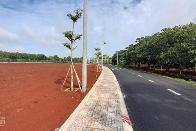 Chính chủ bán gấp lô đất 250m2 khu dân cư Phú Mỹ, gần khu công nghệ cao 450ha Hắc Dịch