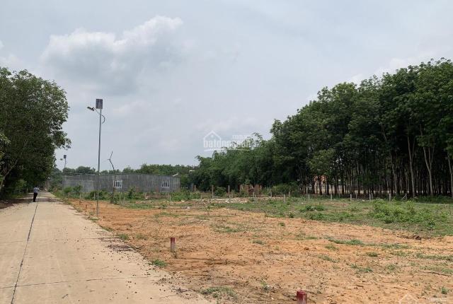 Đất Dầu Tiếng 147m2 ngay khu công nghiệp
