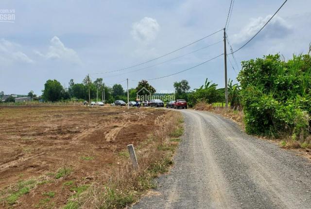 Bán đất sào gần khu công nghiệp Đất Đỏ, đất rẻ nhất khu vực 1 triệu 1/m2