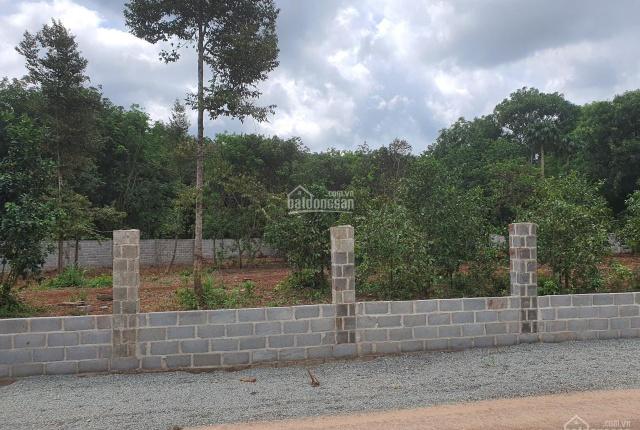 Lô góc 2 mặt tiền đường 105 Long Phước TPBR 87x46 đất trồng cây lâu năm