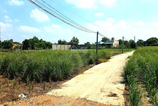 Bán đất 300m2 thổ + 944m2 vườn (37 x 34), đường Ấp 3 xã Long An, Giá chỉ 3,1tr/m2