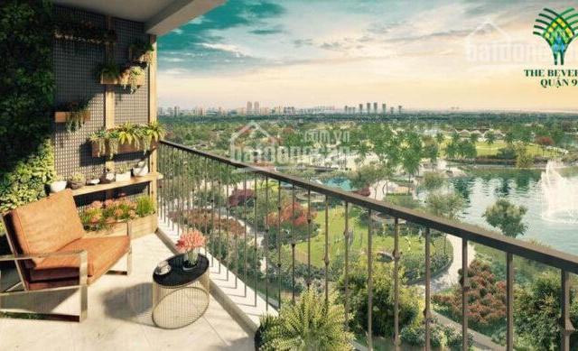 Hot! Vingroup bất ngờ báo giá Phân khu 4 - The Beverly - Căn hộ hạng sang bậc nhất chỉ 65tr/m2