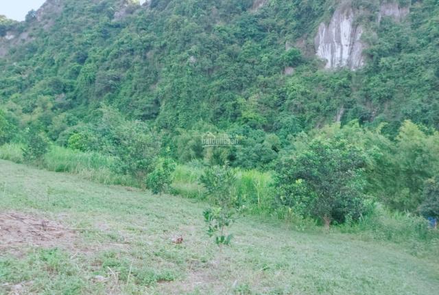 Lô góc bám suối view thoáng giá đầu tư tại Lạc Thủy, Hòa Bình