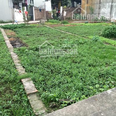 Chính chủ tôi muốn bán gấp mảnh đất 60m2 ở Vĩnh Ninh - Vĩnh Quỳnh - Thanh Trì