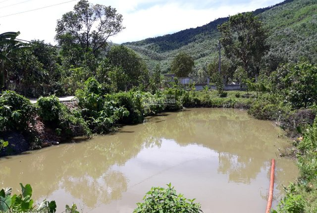 Tổng hợp đất trang trại, đất trồng cây lâu năm, đất cây hàng năm, ở Đà Nẵng: 0972 355 247