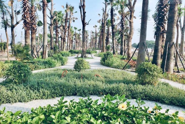 Biệt thự song lập cực đẹp Quận Hoàng Mai 301m2 với 150m2 diện tích sân vườn và hơn 100m2 hầm đậu xe