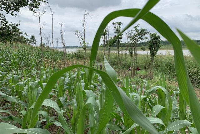 Bán 7 sào 2 đất View Hồ Sông Ray, Huyện Cẩm Mỹ, Tỉnh Đồng Nai giá 5.5 tỷ LH: 0935605866