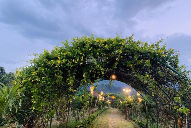 Bán rẻ lô đất làm nhà vườn ngay gần đường Hoàng Văn Thái 1000m2 giá đầu tư làm vườn