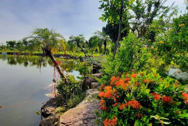 Đất nền rẻ nhất Từ Sơn, Bắc Ninh