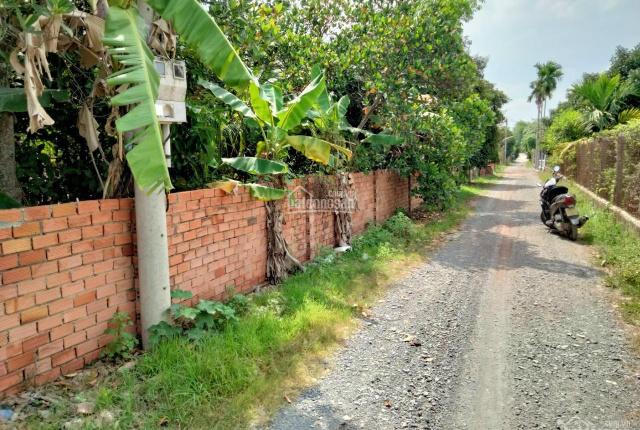 Đất vườn mặt tiền An Sơn 38 (Thuận An) DT 500m2, chiều ngang 20,7m giá thỏa thuận. LH: 0899386296