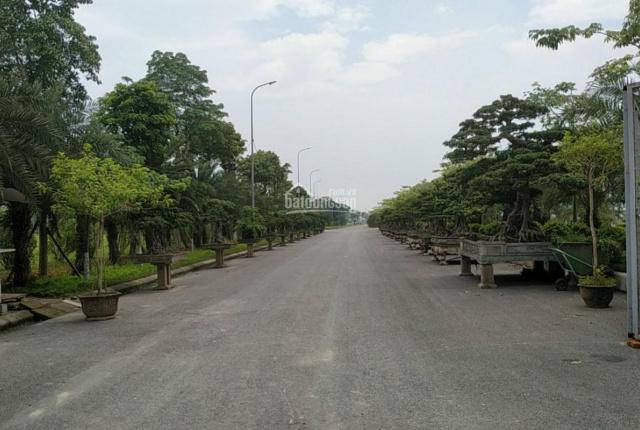 Bán nền liền kề tại Từ Sơn Bắc Ninh (Thuộc khu đô thị Từ Sơn Garden City) - A Hời - 0965683523