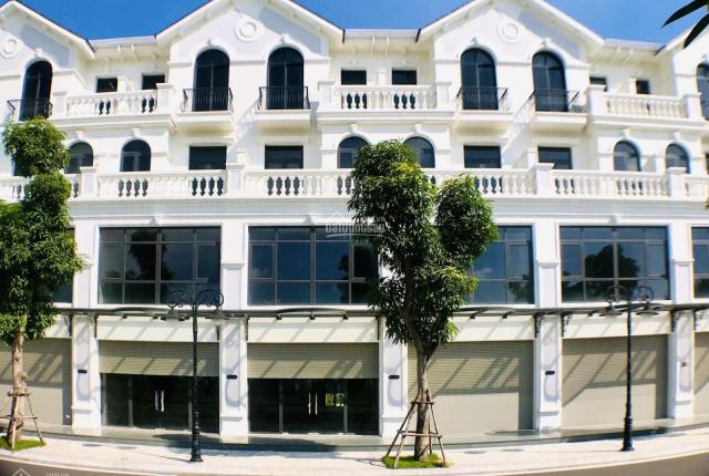 Bán biệt thự, shophouse Vincity Ocean Park Gia Lâm sổ đỏ vĩnh viễn giá từ 11tỷ, Liên hệ: 0911269444