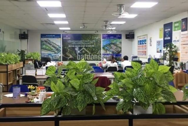 Bán toà văn phòng mặt phố Trần Thái Tông 15 tầng nhỉnh 250 tỷ