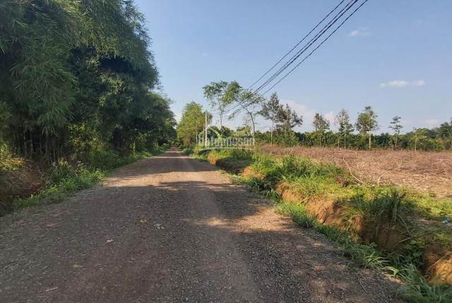 Bán 731m2 đất tại xã Tóc Tiên, Phú Mỹ, Bà Rịa Vũng Tàu