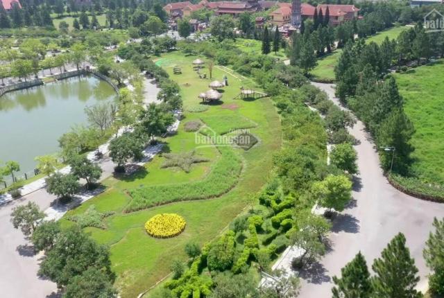 Cần bán 225m2 mặt tiền 9m đất xây biệt thự The Phoenix B2 - 06 vị trí view công viên
