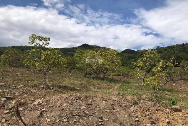 27.950m2 đất RSX quy hoạch CLN cách hồ chứa nước Đắc Lộc 650m