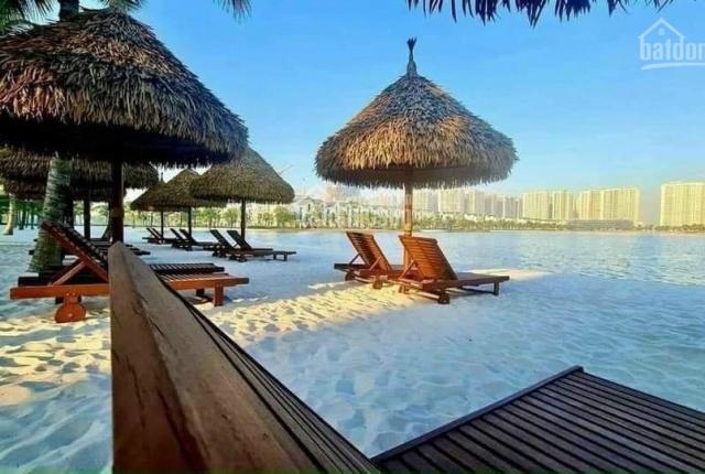 Quỹ 10 căn biệt thự, shophouse giá tốt nhất dự án Vinhomes Ocean Park, LH 0972 794 993