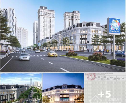 Quỹ căn liền kề - biệt thự Louis City Hoàng Mai cho khách hàng đầu tư tháng 8/2021. LH 0985505363