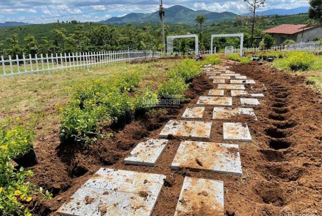 Biệt thự vườn Bảo Lộc 200m2 - 300m2