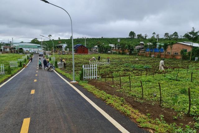 Chính chủ đầu tư mở bán 15 lô đất nền biệt thự 10x20m Nguyễn Tri Phương, Phường Lộc Tiến, Bảo Lộc