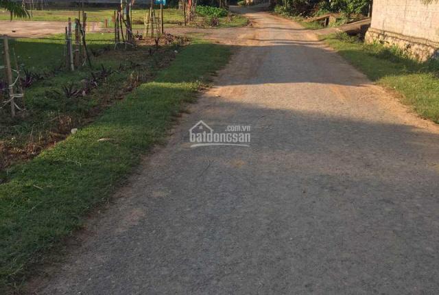 1800m2 sát Ql21 cũ - cách đường HCM 70m tại Bảo Hiệu Lạc Thuỷ giá chưa đến 800k/m2