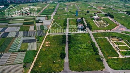 Chính chủ bán đất sổ đỏ tại Mê Linh có vị trí đẹp, chủ nhà cần tiền bán giá rẻ, cam kết không chênh
