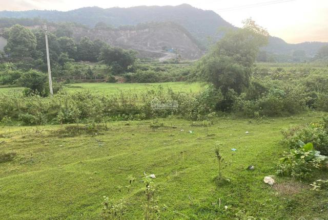 Đẹp không tỳ vết lô đất tổng diện tích: 1612m2 tại Suối Nẩy - Hoà Sơn - giá đầu tư