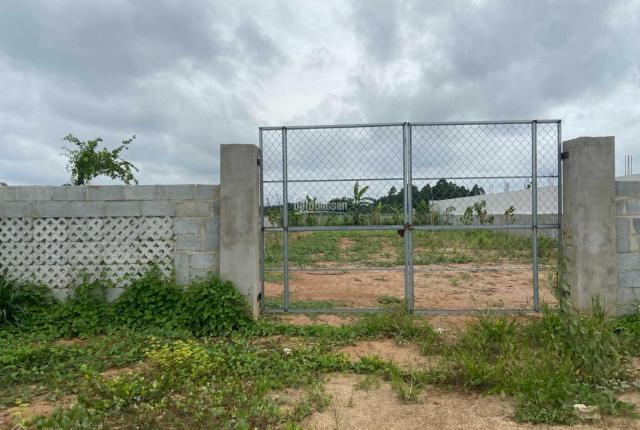 Đất vườn Củ Chi giá rẻ lô góc 2 mặt tiền 592m2 giá 1tỷ377, SHR công chứng ngay