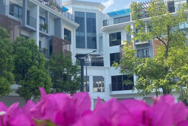 Cần bán căn góc shophouse 268m2, Đông Nam, giá rẻ nhất dự án 40 tỷ, vị trí đẹp thoáng The Manor