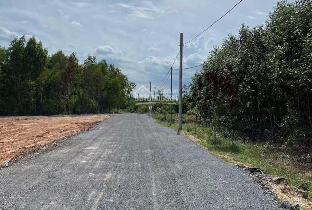 Phước Bình - Long Thành, sau UBND xã, cách MT 500m, DT: 1124m2, đường 12m, đất ONT, giá tốt