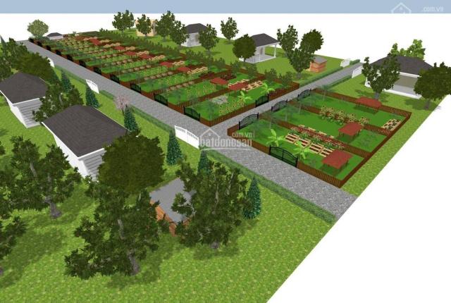 Đất vườn Củ Chi, xung quanh dân cư. Sổ hồng riêng