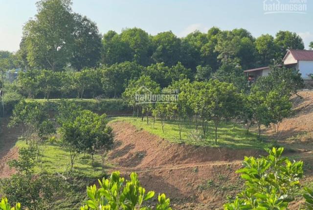 5200m2 bán phân khúc sát nhiều khu nghỉ dưỡng giá rẻ nhất thị trường, tại Nhuận Trạch - Lương Sơn