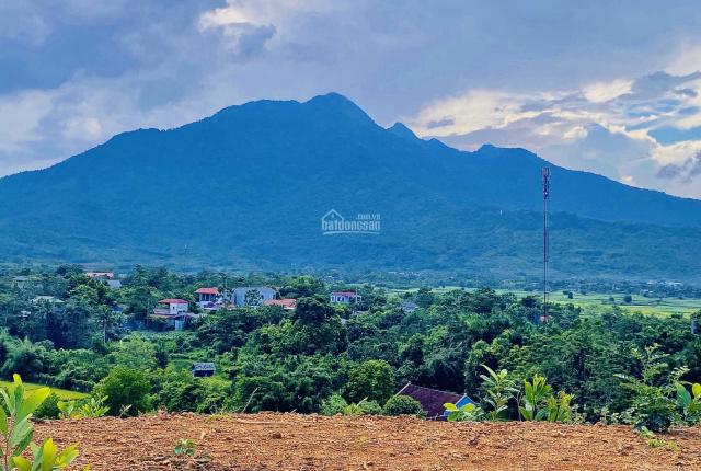 Cần tiền bán gấp lô đất 2517m2 tại Yên Bài, Ba Vì, view nhìn thẳng núi Ba Vì. Lh: 0989157623