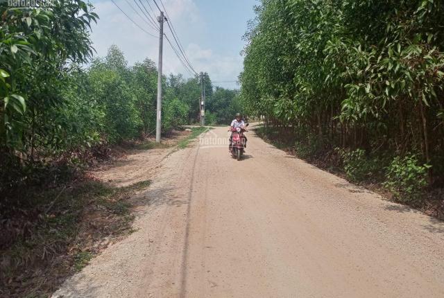 Chính chủ bán gấp 5700 m2 đất tại xã Phước Bình, cạnh KCN Sonadezi, bệnh viện DHYD, giá 6,2 tỷ