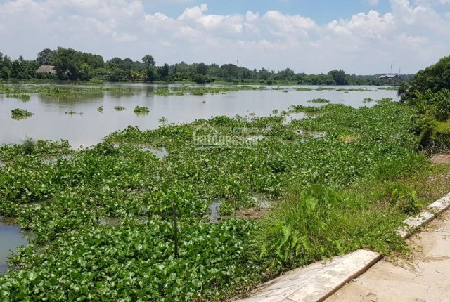 Bán đất đẹp view MT sông Sài Gòn, DT 5.153m2 SHR giá rẻ nhất chỉ 4tr9/m2 tại Trung An, Củ Chi